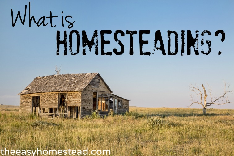 What-is-Homesteading-The-Easy-Homestead-.com_