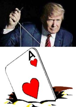 ace in hole trump